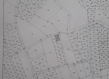 ارض للبيع في جريبا بجانب عمارات الايتام