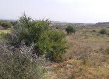 قطعة ارض للبيع بالخمس منطقة الطوره