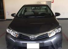 For rent a Toyota Corolla 2017