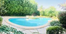 للايجار فيلا مفروشة بحمام سباحة بكمباوند بأكتوبر قريبه من مول العرب