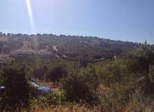 ارض 750م  في راس خلف للبيع