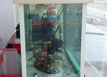حوض اسماك عمل ابعاد 60×30×40