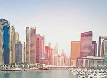 Business Setup in Dubai and UAE