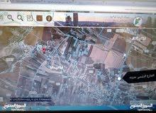 أرض سكن للبيع مادبا-جرينه 1253م