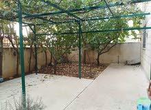 شقة ارضية مميزة للبيع قرب الهوليدي ان 180م مع حديقة وترسات 300م بسعر 150000