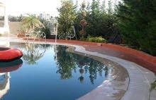 فيلا تصميمها متل القصر مع مسبح و حديقه