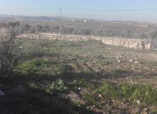 قطعة ارض للبيع في منطقة دحل بالقرب من شارع جرش الزرقاء