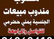 مطلوب مندوب يمني حضرمي