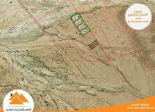 """اراضي استثمارية (جنوب عمان) """"الحمام الشرقي"""""""