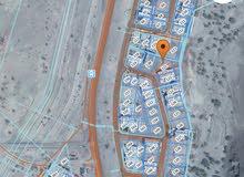 للبيع ارض في بوشر العوابي بمساحة كبيره وموقع ممتاز