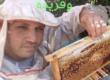 عسل نحل طبيعي ميه في الميه