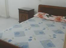 شقة بشارع الباشا سوبر لوكس للايجار