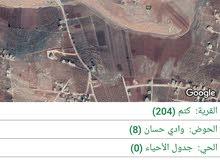 للبيع في كتم حوض وادي حسان على كيرف مساحة الارض 598 متر مربع على شارعين