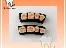 اسنان تدريب كومبوزت