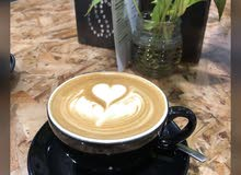 looking for barista
