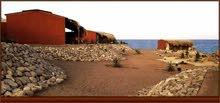 مخيم و غرف سياحية على البحر مباشرة