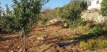 قطعة أرض للبيع في رأس منيف