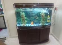 Fish Aquarium in good condition for sale
