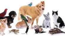 نتبني جميع انواع الحيوانات