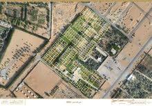 تملك ارضك السكنية في عجمان ب189 الف شامل جميع الرسوم والتملك حر