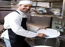 مطلوب استيوارد للعمل في شرم الشيخ