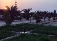 apartment in Kuwait City Doha for rent