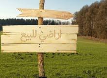 بيع او شراء اراضي ومزارع في الاردن