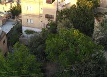 حي نزال الذراع الغربي  شارع الادريسه قرب بقاله إسماعيل