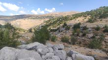 Land in tarcich for sale 701m in low price