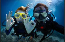 try scuba diving for beginners
