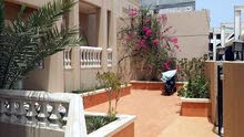 Best price 0 sqm apartment for rent in HawallySalwa