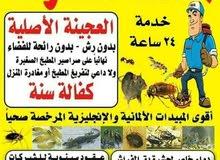 المحترف العالميه لمكافحه الحشرات والقوارض