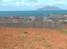 ساحة مطلة على البحر و على جزيرة زمبرة .