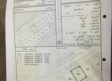الدهاس الف متر مربع شبك للبيع رقم 253 و254  سكني