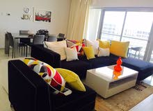 Delighted 2 BR FF Apartment with Lagoon View in Amwaj Island For Rent