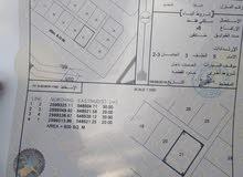 تم تخفيض السعر للبيع  قطعة ارض  فلج الشراه مخططة 4