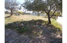 قطعة أرض للبيع 331 م بالحمامات الخروبة  كاملة من كل الوثائق مع رخصة بناء
