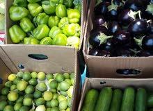 بساتين الجزيرة لبيع الخضروات والفواكه