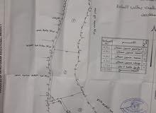 ارض للبيع في جماعين نابلس