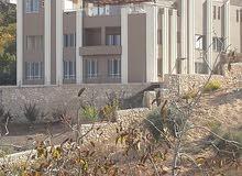 فيلا فخمه مسطح البناء 1600م على ارض مساحة 3500م في منطقةام جوزه طريق السلط اطلال