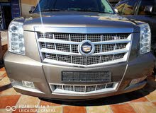 Used  2013 Escalade