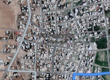 قطعة ارض داخل التنظيم في الكرك منطقة الجديدة