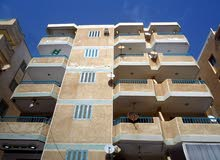 شقة سوبر لوكس واجهة بحري - للبيع في شاطئ النخيل الاسكندرية