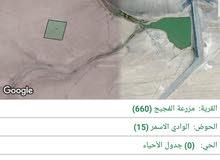 قطع اراضي في الشوبك استثماريه  قرب السد والمزارع 10 دونمات القطعه