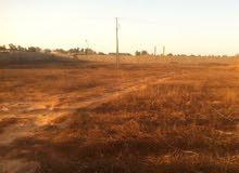 أرض 3550 متر بالقرب من جامع حمزة