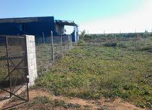 مزرعة 2600 م مربع
