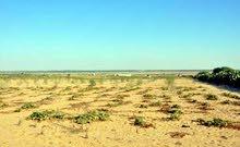قطعة أرض مميزة في منطقة اليادودة طريق المطار و قرب جسر مادبا للبيع