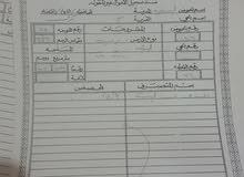 3 قطع أرض محافظه الكرك قرية عي حوض السقيريه واجه 100 على الشارع الرئيسي