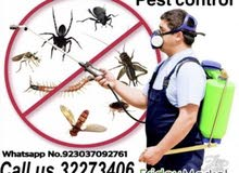 Pest control مكافحة الآفات