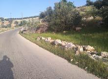 للبيع أرض زراعيه أراضي غرب عمان